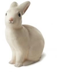 Nattlampa - Kanin