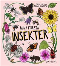 Bok - Mina första insekter