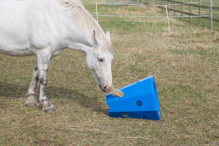 Hay activity feeder