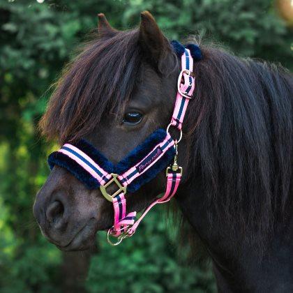 Grimma ponny päls