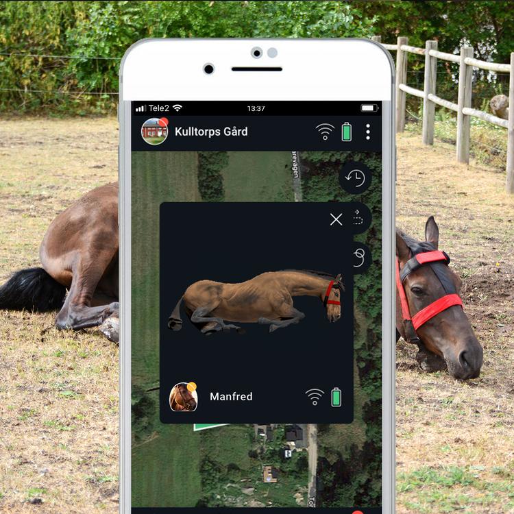 Hoofstep - Smart mobil övervakning i hage & box