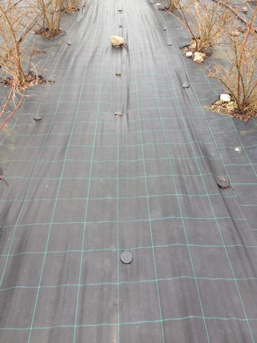 2 st MARKTÄCKVÄV  100 meter x 1,05  m.  Ej rutmönstrat.