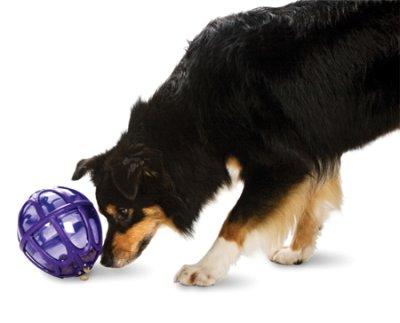 BUSY BUDDY Kibble Nibble Feeder Ball M/L