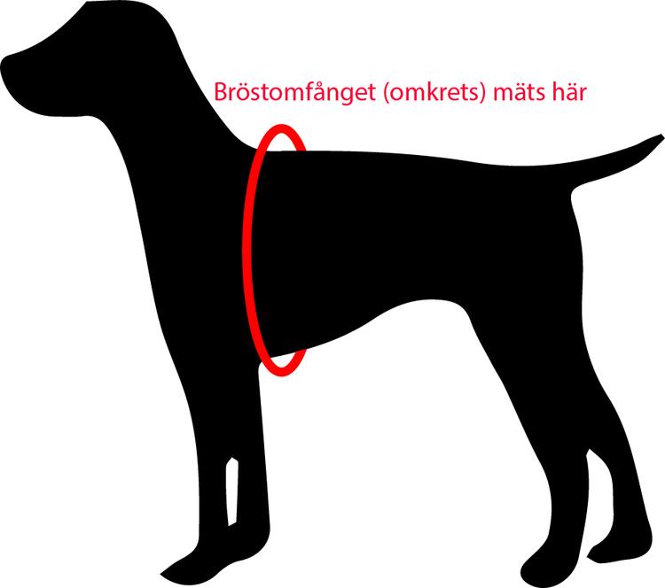 Flytväst hund Ezydog  Gul