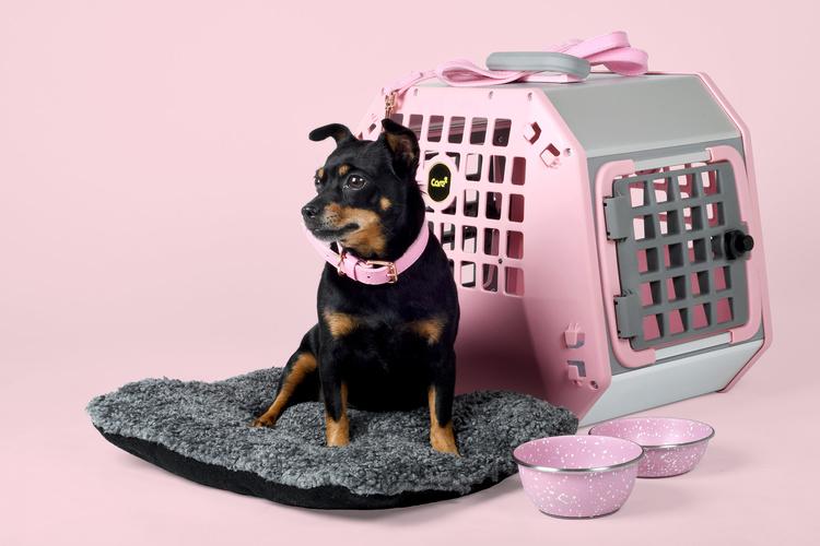 Mim Care2 Pink edition Medium