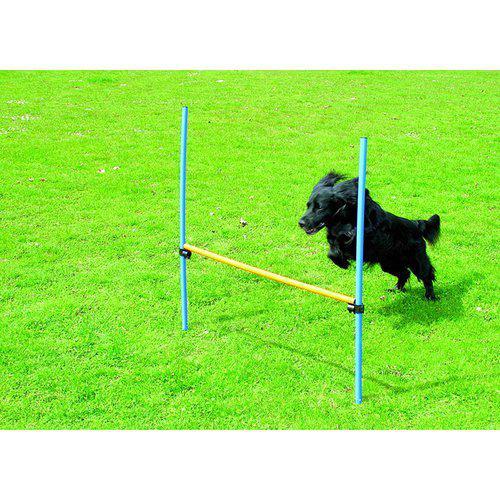 Hund agility hinder höjd 116cm