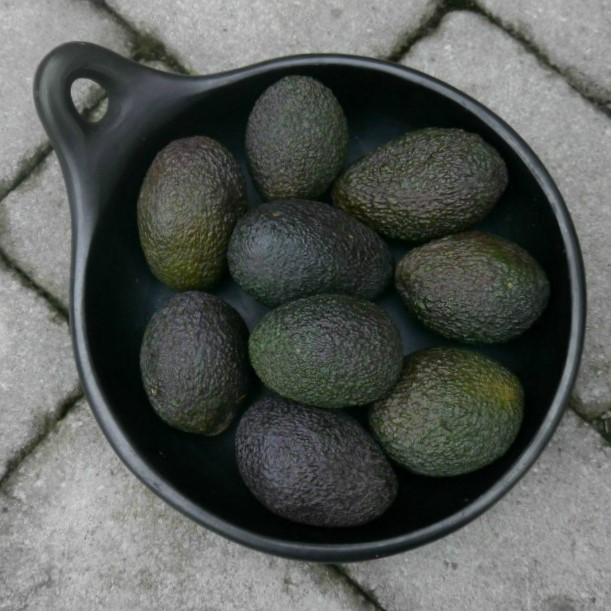 ugnsfast form från karott design, i svart lergods, passar även som grillfat,  utsöndrar inga gifter. Från en hållbar produktion och rättvis handel