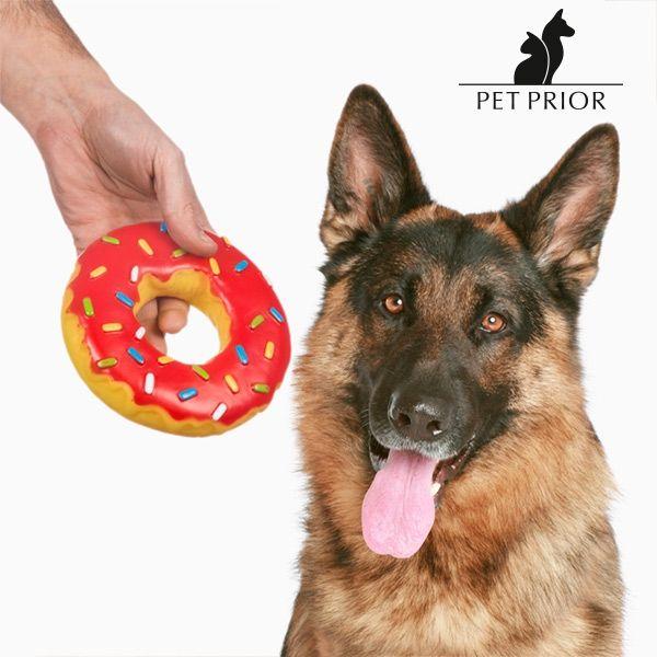 Hundleksaken Donut