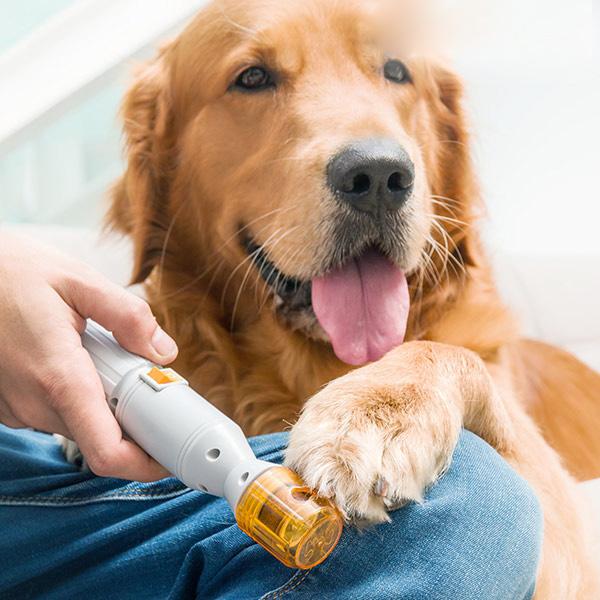 Nagelklippare för Husdjur