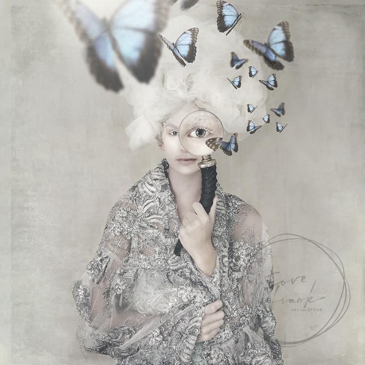 """Butterfly Spy"" Folded card 15x15cm"