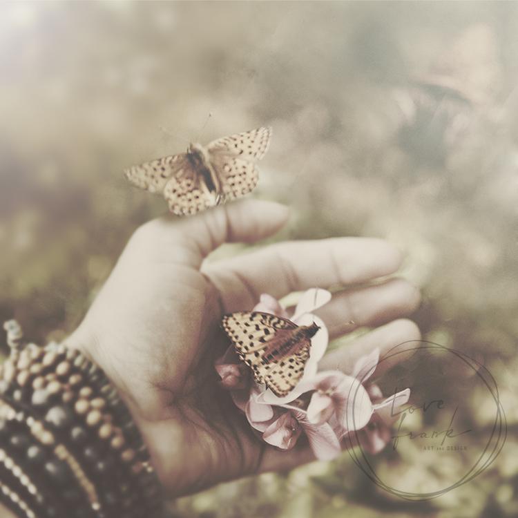 """Butterflies"" Folded card 15x15cm"
