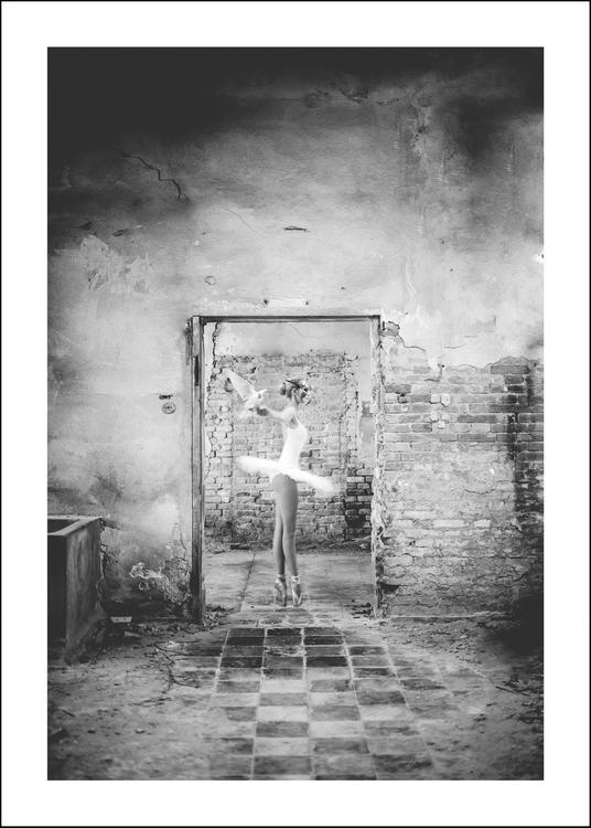DANTE - Art print 50x70 cm - Limited Edition