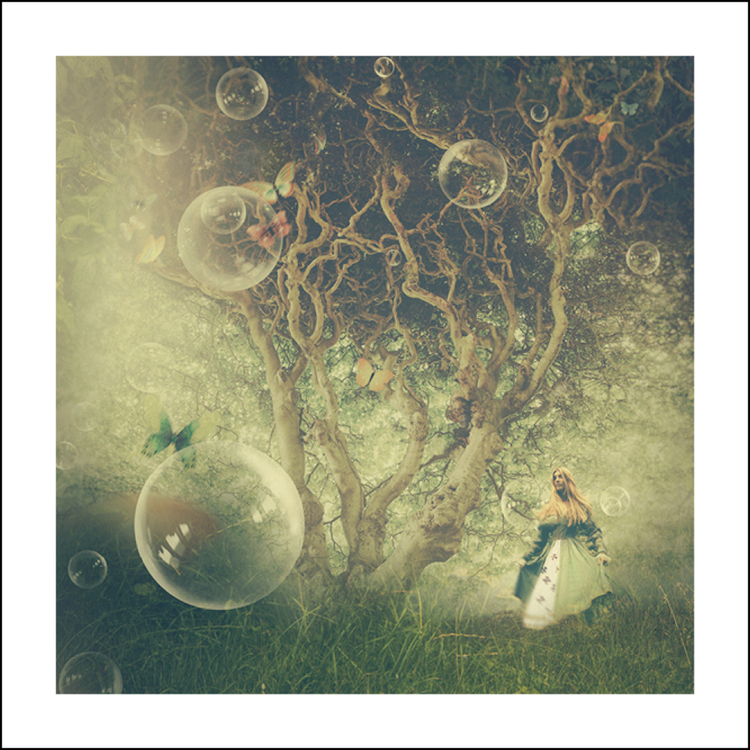 """""""Butterfly Tree"""" 50x50 cm"""
