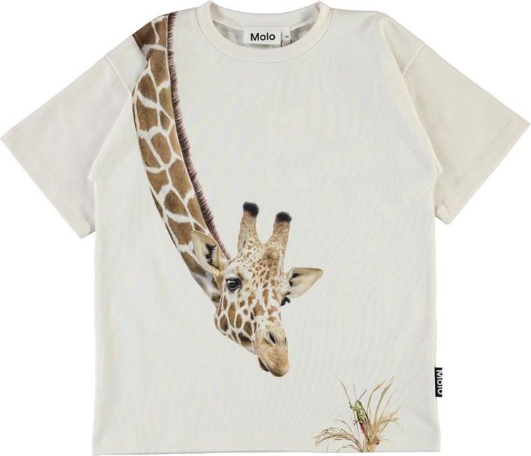 Molo Rillo T-shirt