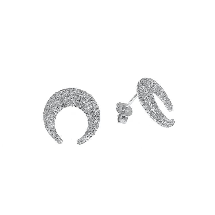 Örhängen Sparkling Crescent Silver