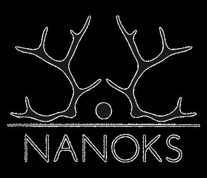 Nanoks