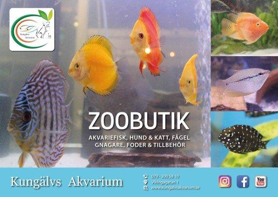 Kungälvs Akvarium Ab