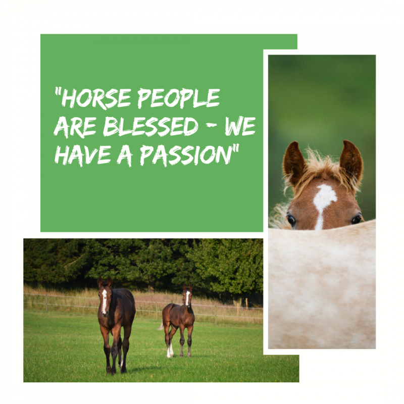 Horse people are Blessed - We have a Passion