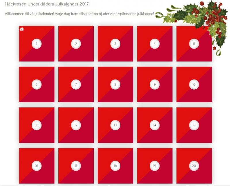 Erbjudanden & julklappstips i vår julkalender!