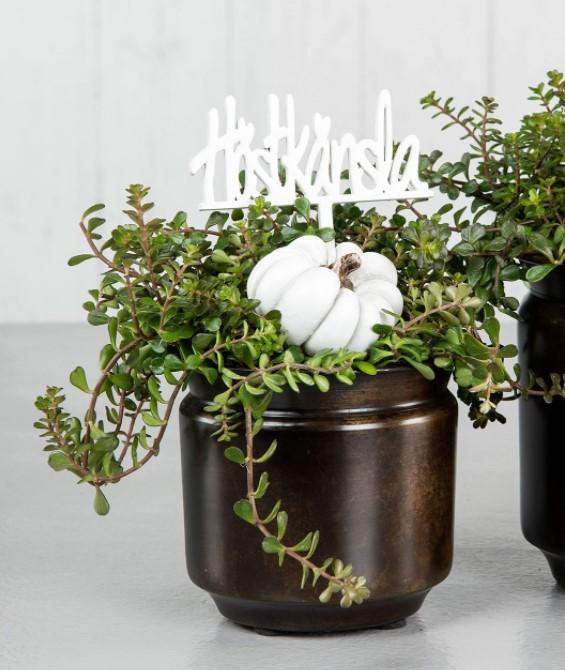 Pumpa dekoration med pinne - 2 pack